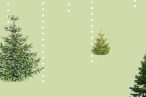 Collage med juletræer og sne